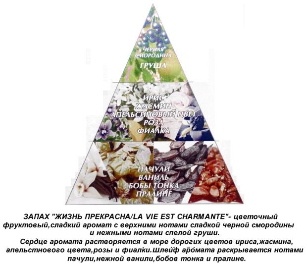 """Пирамида ароматов духов """"Жизнь прекрасна"""""""