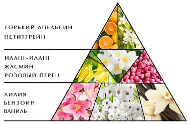 """Пирамида ароматов """"Женщины Цветы Романс"""""""