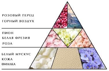 """Пирамида ароматов """"Женщины Цветы Эмоция"""""""
