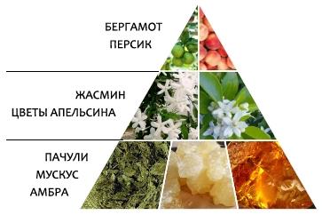 "Парфюмерная вода ""Сердце Gold"" пирамида аромата"