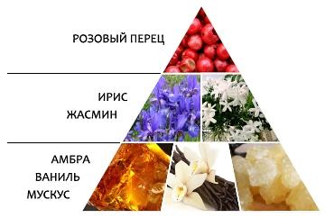 "Парфюмерная вода ""Сердце Red"" пирамида ароматов"