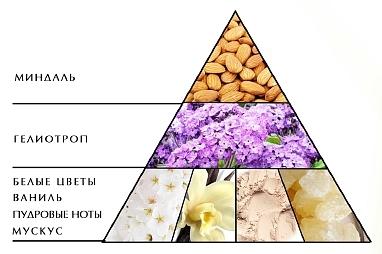 "Пирамида аромата ""Ноктюрн зеленый"""