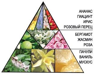 "Пирамида тонизирующего геля для душа ""Шансита"""