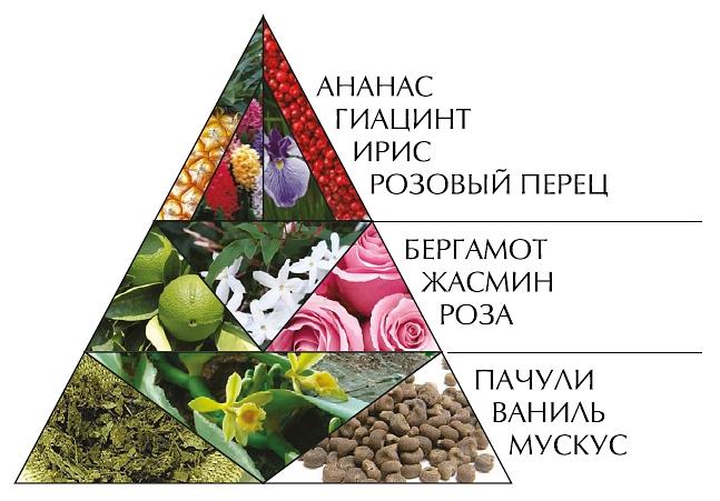 """Пирамида духов """"Шансита"""""""