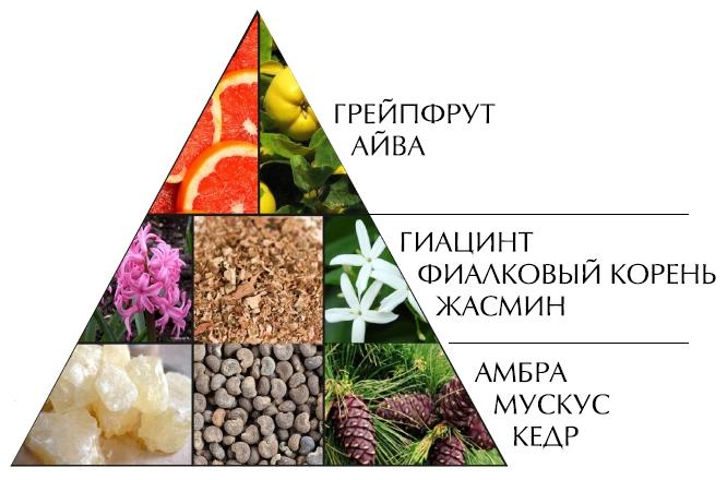 "Пирамида духов ""Шансита нежная вода"""
