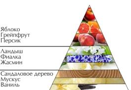 """Духи """"Милая днем"""" пирамида ароматов"""