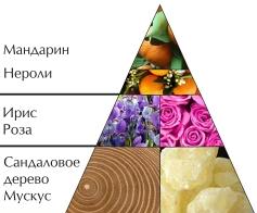 """Духи """"Следуй за мной. День"""" пирамида ароматов"""