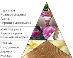 """Пирамида ароматов духов """"Следуй за мной. Ночь"""""""