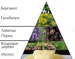 "Пирамида ароматов ""Энержи спорт"""