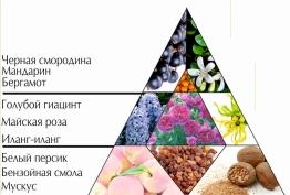 """Духи """"Играй и очаровывая"""" пирамида ароматов"""