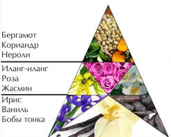 "Пирамида ароматов духов ""Красная Москва"""