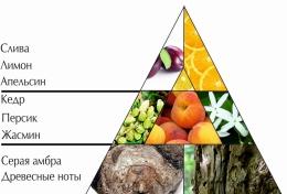"""Пирамида ароматов парфюмерной воды """"Легкий бриз"""""""