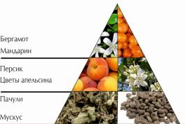 """Пирамида ароматов парфюмерной воды """"Миллионерша"""""""
