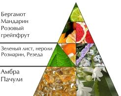 """Пирамида ароматов """"Моя вода"""""""
