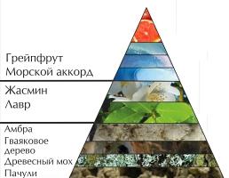 """Пирамида ароматов туалетной воды """"Непобедимый"""""""