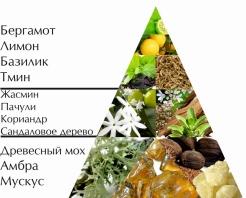 """Пирамида ароматов одеколона """"Командор"""""""