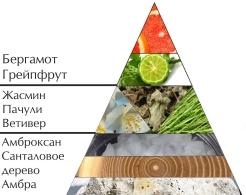 """Пирамида ароматов одеколона """"Хранитель"""""""