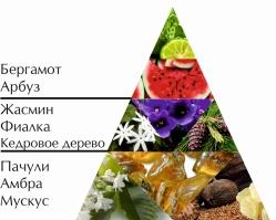 """Пирамида ароматов одеколона """"Наташа"""""""