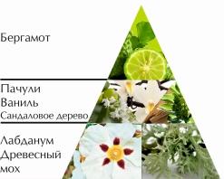 "Одеколон ""Шипр"" пирамида ароматов"