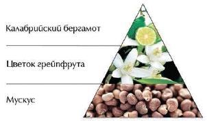 """Пирамида ароматов туалетной воды """"Кристалл любви"""""""