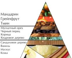 """Пирамида ароматов туалетной воды """"Победитель"""""""