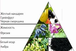 """Пирамида духов """"Сезон любви"""""""