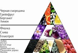 "Парфюмерная вода ""Сезон мечтаний"" пирамида"