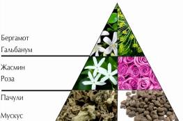 "Пирамида ароматов парфюмерной воды ""Шансита"""