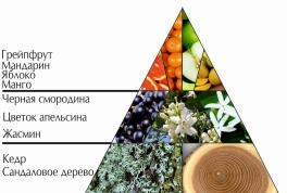 """Пирамида ароматов парфюмерной воды """"Моя солнечная миллионерша"""""""