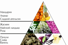 """Пирамида ароматов духов 'Играй и очаровывай spicy"""""""