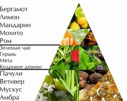 """Пирамида ароматов туалетной воды """"Только ты"""""""