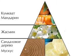 """Пирамида ароматов туалетной воды """"Лазурный берег"""""""