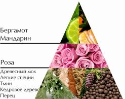 """Пирамида ароматов туалетной воды """"Океан"""""""