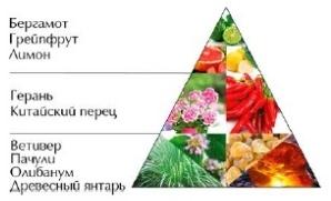 "Пирамида ароматов ""Ветивер Шик"""
