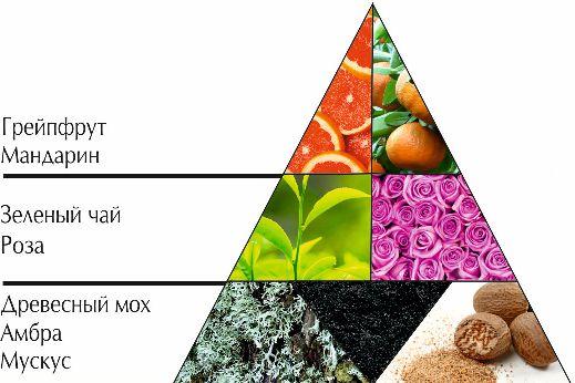 """Пирамида ароматов парфюмерная вода """"Зеленый чай"""""""