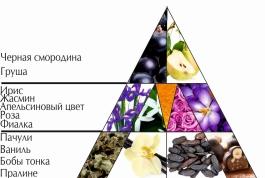 """Пирамида ароматов парфюмерной воды """"Жизнь прекрасна"""""""