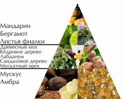 """Пирамида ароматов туалетной воды """"Золотой Галион"""""""
